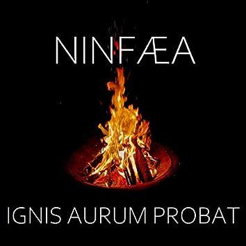 Ignis Aurum Probat