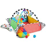 Baby Einstein Patch's 5-in-1 Color Playspace Activity Play Mat & Ball Pit Gym with Music, Age Newborn+