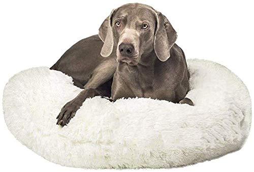 Wxqym - Cama ortopédica para mascotas con forma de donut y cama para dormir para perros de tamaño mediano extra grande (color: blanco, tamaño: 80 x 80 cm)