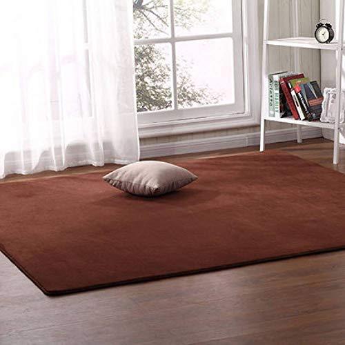 JJSDT tapijt, koraalrood, dik, voor woonkamer, salontafel, slaapkamer, tapijt, voor bed, tent, ondervloer