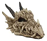 Ebros Gift Jurassic Beowulf Elder Dragon Head Skull Realistic Fossil Statue 7.75' Long Miniature Figurine Might and Magic for Medieval Fans Game of Thrones Lovers Dungeons and Dragons Fantasy Decor