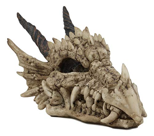 "Ebros Gift Jurassic Beowulf Elder Dragon Head Skull Realistic Fossil Statue 7.75"" Long Miniature Figurine Might and Magic for Medieval Fans Game of Thrones Lovers Dungeons and Dragons Fantasy Decor"