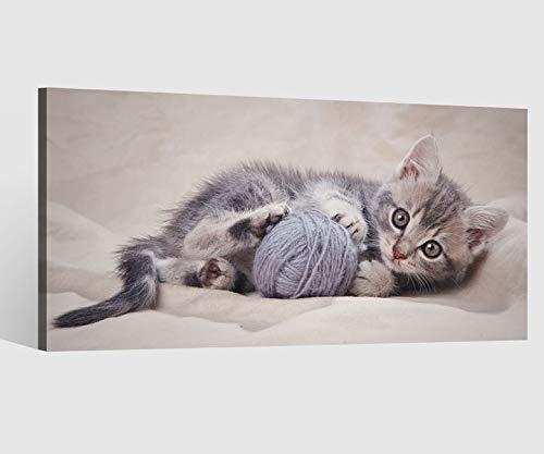 Leinwandbild Baby Katze Tier Kätzchen klein Ball spielend Leinwand Bild Bilder Tierwelt Wandbild Holz Leinwandbilder Kunstdruck vom Hersteller 9AB727, Leinwand Größe 1:80x40cm