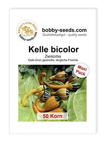 Kelle Bicolor Zierkürbis von Bobby-Seeds, 50 Korn