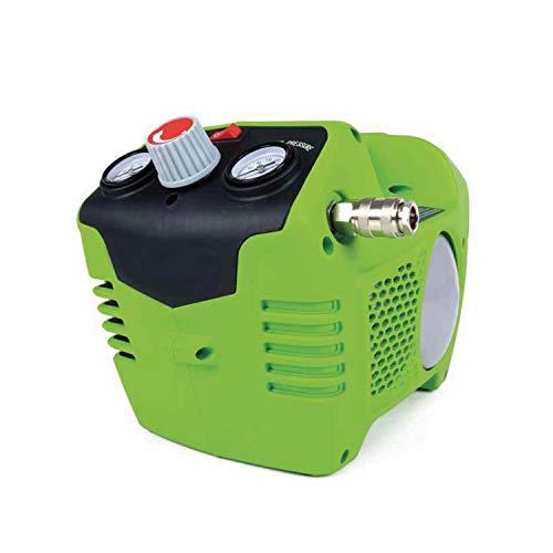 Greenworks 074100302 Compresor De Aire Inalámbrico, 24 V, Verde