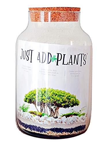 Jodeco Glas Diy Flaschengarten XXL Biosphere Set Pflanzenterrarium Mit Korkdeckel Just Add Plants- Ø 19 Cm Höhe 30 Cm Mini Garten Glas-Pflanzen-Terrarium