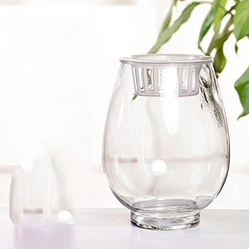 ZHFC-transparente glas blumentopf vase aquarium pflanzen fuguizhu sichern grüne wohnzimmer tisch ikea - blume,höhe von etwa 18cm festnetz