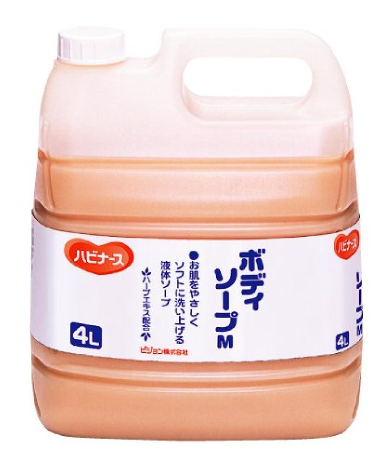 恨みロータリー経過ハビナース ボディソープ 4L [業務用]