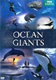 The world of whales and dolphins, uncovering the secrets of their intimate lives as never before.
