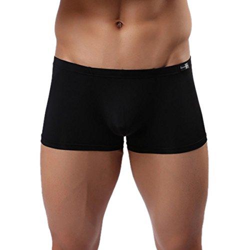 Panegy Herren Low Rise Transparent Glatt Nylon Boxershorts Boxer Briefs Unterwäsche Cool Atmungsaktiv Viskose Reizwäsche Größe XXL - Schwarz