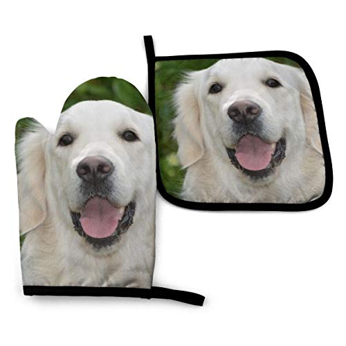 Onlyouder Golden Retriever Oven Mitts & Pot Holders Set Kitchen Heat Resistant and Machine Washable for Cooking Baking Grilling and BBQ