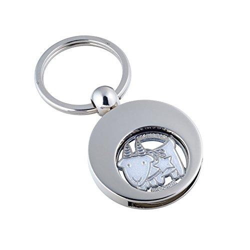 Jadani Hochwertiger Schlüsselanhänger mit EK-Chip Sternzeichen Steinbock