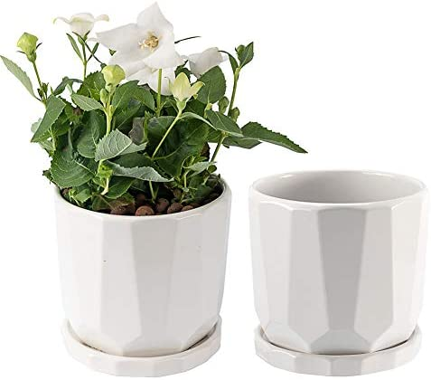 Plant Pots 2 Pack BOTEFEI 5 5 inch Succulent Pots with Drinage White Ceramic Round Flower Pots product image