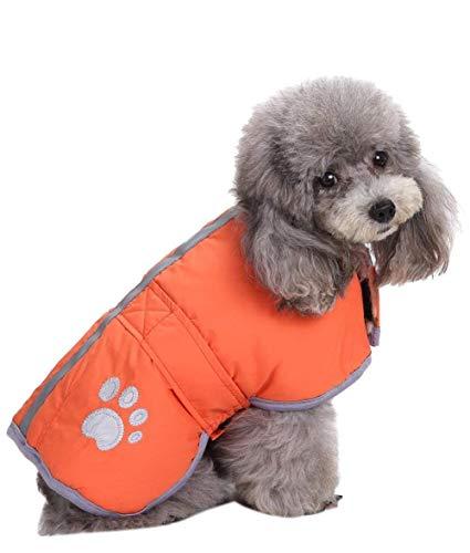 Queenmore Reversible Dog Coat