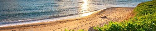 wandmotiv24 Pared Trasera de Cocina Cielo, mar y Hierba Verde 260 x 50 cm (W x H) - 3 mm de Espuma Protector de Salpicaduras de la Pared Posterior del nicho Reemplazo del Espejo del azulejo M0922