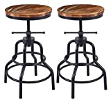 Vintage Industrial Bar Stool-Rustic Swivel Bar Stool-Round Wood Metal Stool-Kitchen Counter Height Adjustable Pipe Stool-Cast Iron Stool 20-27 Inch (Set of 2)