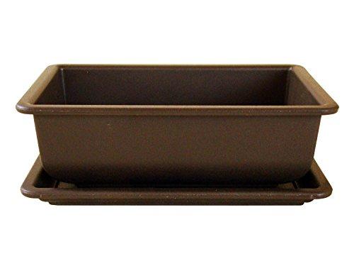 Bonsaischale aus Kunststoff mit dunkelbraunen Untersetzer Länge: 22cm - Breite: 15,5cm - Höhe: 7,5cm eckige Form