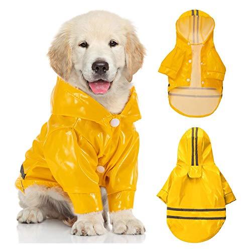 Scobuty -   Haustier Hund