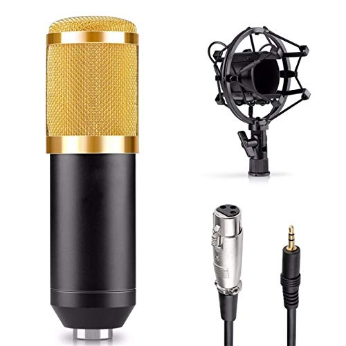 Micrófono Bluetooth karaoke inalámbrico micrófono altavoz profesional micrófono de mano micrófono fonógrafo grabación 03gold