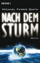 Nach dem Sturm: Roman