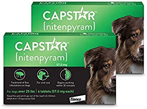 Capstar Flea Tablets for Dogs Over 25 lbs., Count of 12, 12 CT