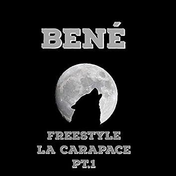 La carapace Pt.1 (Freestyle)