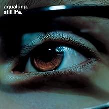Still Life By Aqualung (2003-10-27)