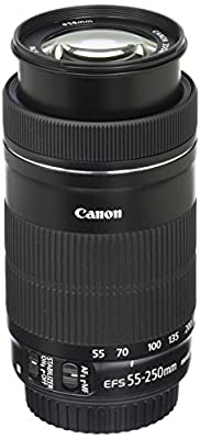 Canon 55-250mm STM by Canon