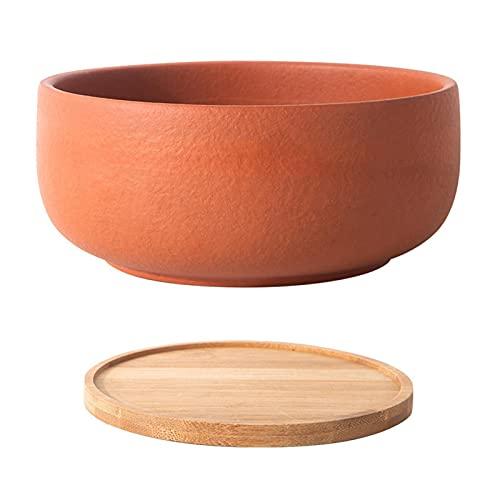 Maceta de terracota de 8 pulgadas, para bonsái con agujero de drenaje y bandeja de bambú para plantas de interior y exterior
