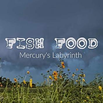 Mercury's Labyrinth