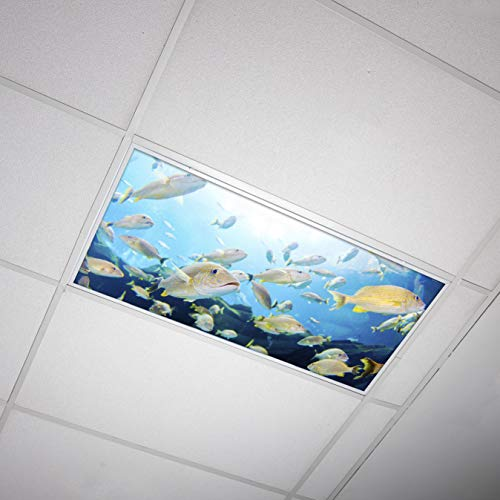 Octo Lights - Fluorescent Light Covers - 2x4 Flexible Decorative Light Diffuser Panels - Ocean - for Classrooms and Offices - Ocean 004