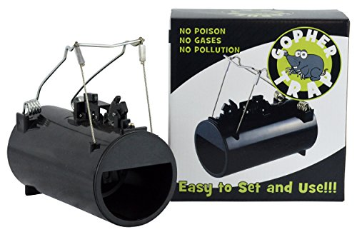 Southern Homewares Black Hole Gopher Rodent Trap Pest Control Reusable Rugged Plastic