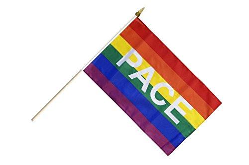 Flaggenfritze® Stockflagge Regenbogen mit PACE - 30 x 45 cm