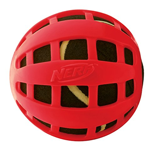 Nerf Dog TPR Float Tennis Ball - schwimmfähiger Tennisball in blau und rot medium 10cm