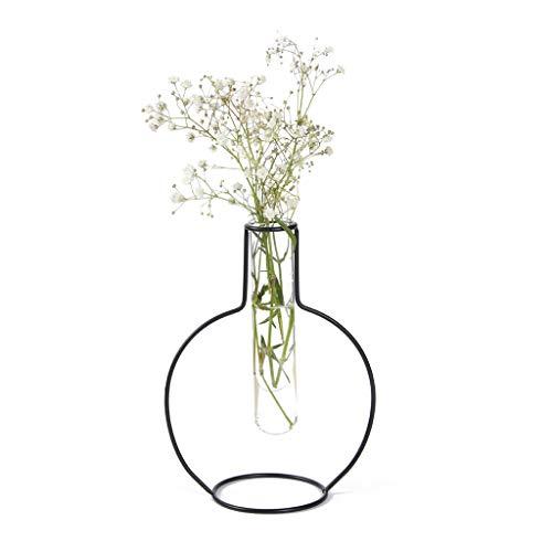 Balvi Vaso Round Silhouette Colore Nero Vaso Decorativo di Vetro e Metallo Vaso Originale in Forma di provetta Metallo/Vetro 19x8x14,5