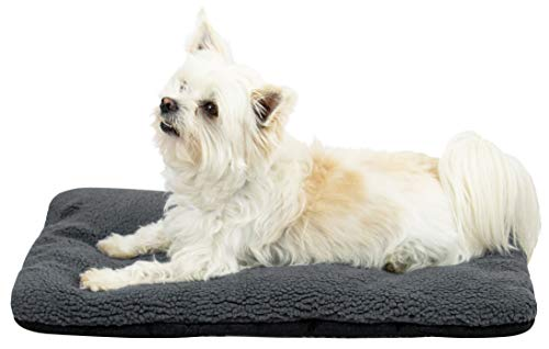 ZOLLNER Hundebett Katzenbett 40x60 cm, waschbar, grau, Antirutschnoppen