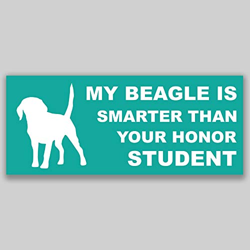 JMM Industries My Beagle is Smarter Than Your Honor Student Vinilo adhesivo adhesivo para ventana de coche, paquete de 2 unidades, 19.5 cm x 7.6 cm, calidad premium, laminado protector UV PDS1153