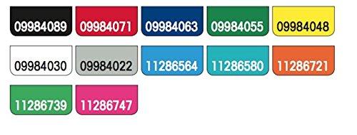Original Falken PP-Color Kunststoff-Ordner. Made in Germany. 8 cm breit DIN A4 weiß Ringordner Vegan Aktenordner Briefordner Büroordner Plastikordner Schlitzordner