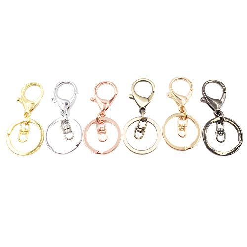 Dcatcher 6 Assorted Colours Metal Snap Hook Lobster Clasps Lanyard with Keyring for Keychain DIY Bags, Pack of 6