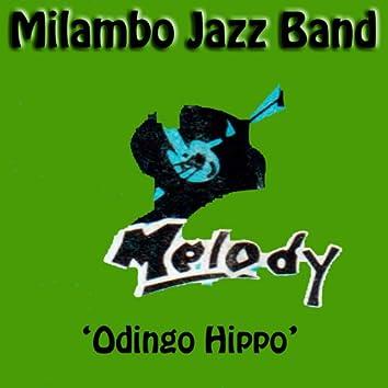 Odingo Hippo