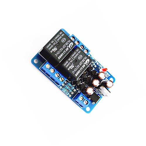 Why Choose Exiron 1PCS Dual-channel Stereo Audio Amplifier Speaker Protection Board Component DIY