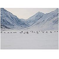 BD-Boombdl キャンバス絵画プリント冬の雪の風景山と川動物の装飾壁アート家の装飾ポスター50X40cmフレームなし