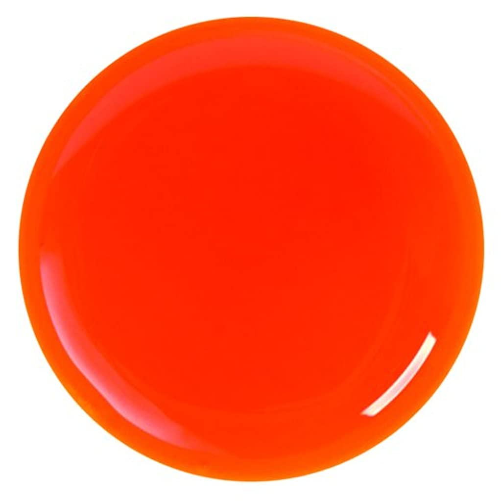 拒絶する全滅させる高層ビルMY GEL(マイジェル) ソフトジェル バレンシアオレンジ 4g 【マット】 発色が良くリフトしにくい!