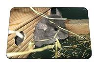 26cmx21cm マウスパッド (チンチラミンクグラスハウス) パターンカスタムの マウスパッド
