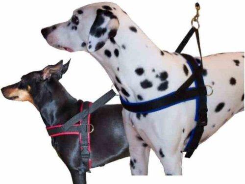 Hundegeschirr mit Neopren gefüttert rot 90-100 cm