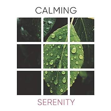 # 1 Album: Calming Serenity