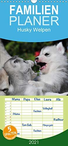 Husky Welpen - Familienplaner hoch (Wandkalender 2021, 21 cm x 45 cm, hoch)