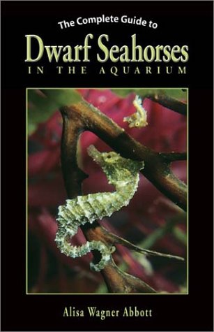 The Complete Guide to Dwarf Seahorses in the Aquarium