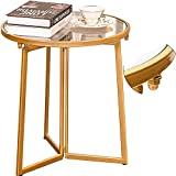 Donosura Small End Table, 18K Gold Small Side Tables for Small Spaces, Round Metal Glass Bed Side Table Bedroom, Midcentury Modern Accent Tables for Dorm Room, 18