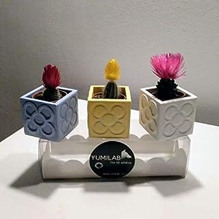 3 Mini Macetas Panots, baldosa Panots, rachola de Barcelona, mini jarrones, mini floreros, despedidas, bodas, evento, rega...